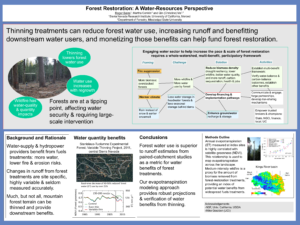 Forest Restoration - A Water Resources Perspective