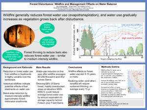 Forest Disturbance: Wildfire and Management Effects on Water Balance