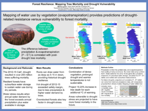 Forest Resilience: Mapping Tree Mortality and Drought Vulnerability