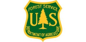 Forest service logo with white space